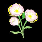 image-tukimisou